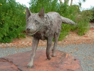 Red Dog : เพื่อนซี้หัวใจหยุดโลก - เรื่องเล็กๆ ของหมาน้อย ที่ทำให้คุณยิ้มได้กว้างๆ